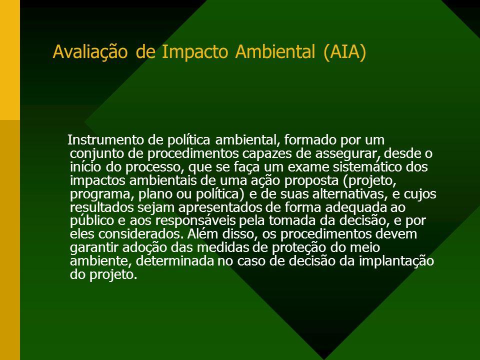 Avaliação de Impacto Ambiental (AIA)