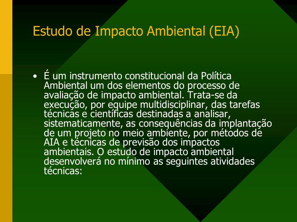 Estudo de Impacto Ambiental (EIA)