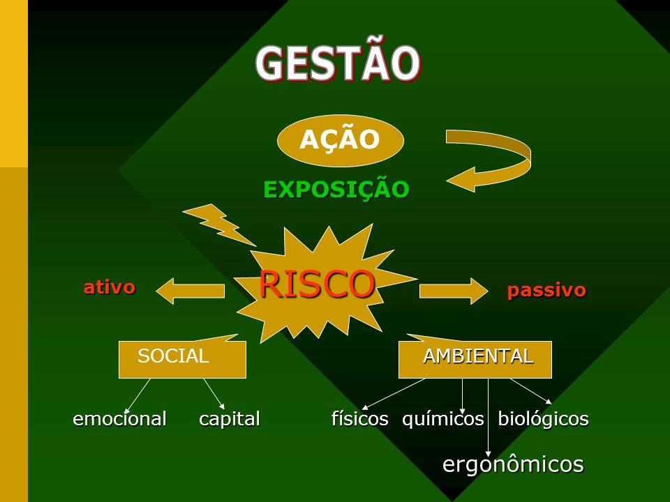 GESTÃO RISCO passivo EXPOSIÇÃO ergonômicos SOCIAL AMBIENTAL