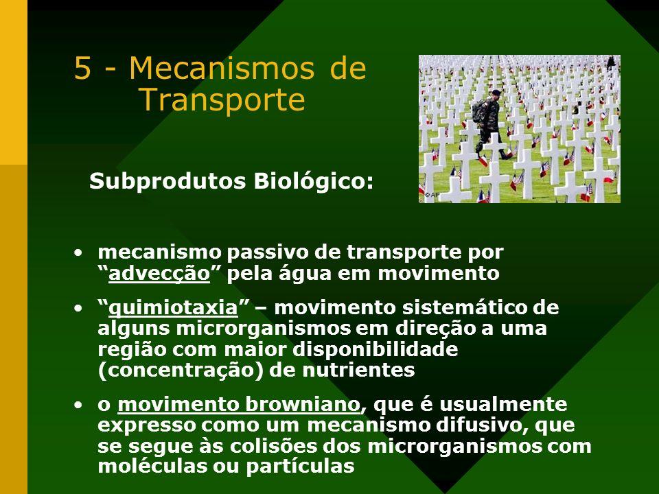 5 - Mecanismos de Transporte