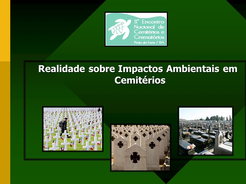 Realidade sobre Impactos Ambientais em Cemitérios
