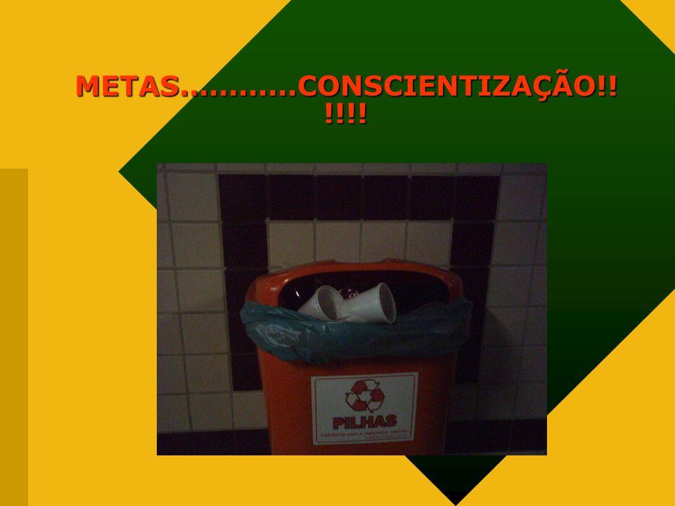 METAS............CONSCIENTIZAÇÃO!!!!!!