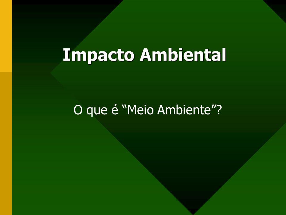 Impacto Ambiental O que é Meio Ambiente