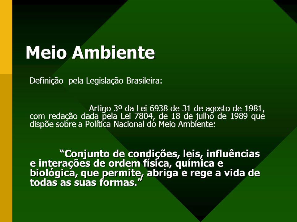 Meio Ambiente Definição pela Legislação Brasileira: