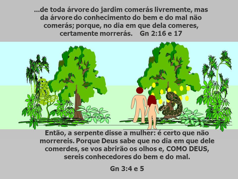...de toda árvore do jardim comerás livremente, mas da árvore do conhecimento do bem e do mal não comerás; porque, no dia em que dela comeres, certamente morrerás. Gn 2:16 e 17