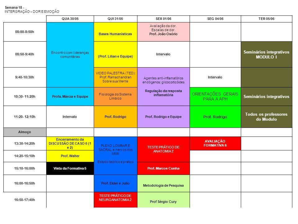 Seminários integrativos MODULO I Todos os professores do Modulo