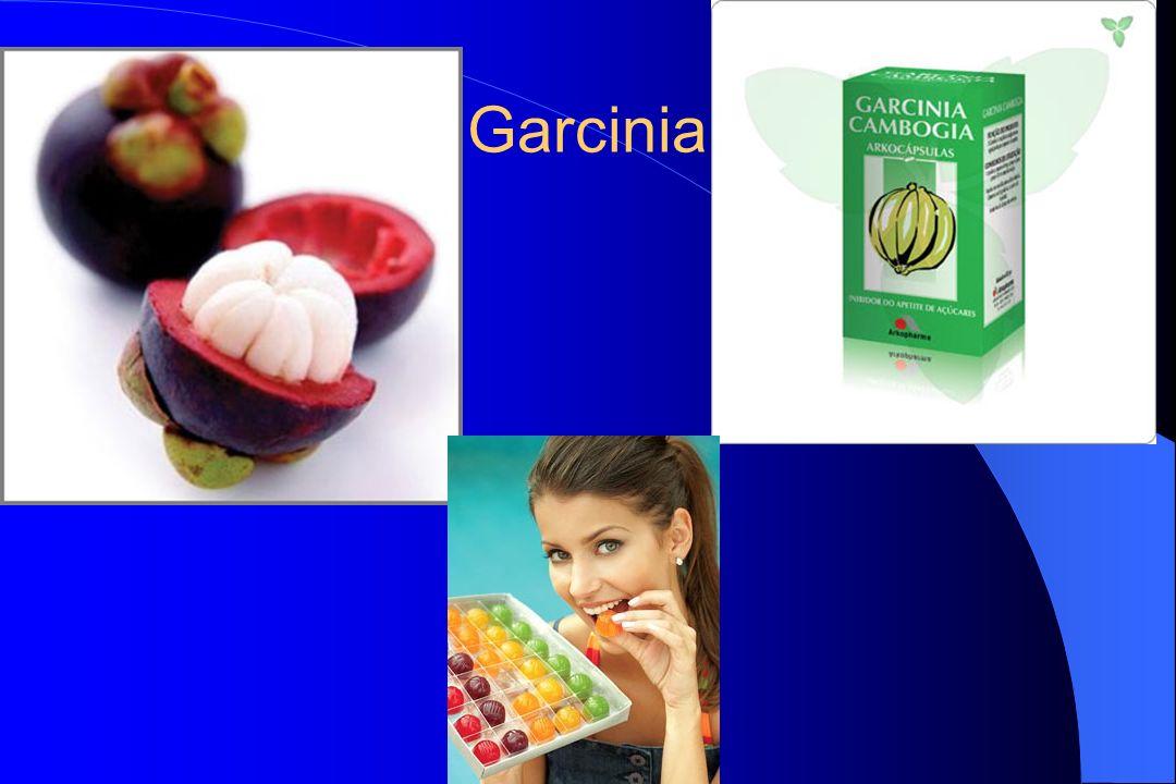 Garcinia