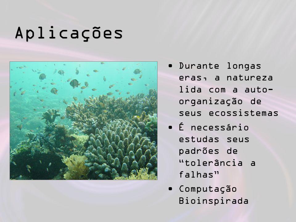 Aplicações Durante longas eras, a natureza lida com a auto-organização de seus ecossistemas.