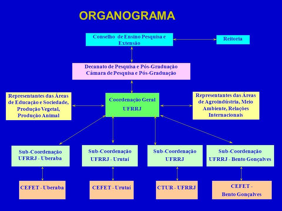 ORGANOGRAMA Conselho de Ensino Pesquisa e Extensão Reitoria