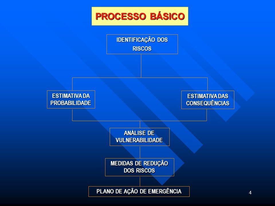 MEDIDAS DE REDUÇÃO DOS RISCOS PLANO DE AÇÃO DE EMERGÊNCIA