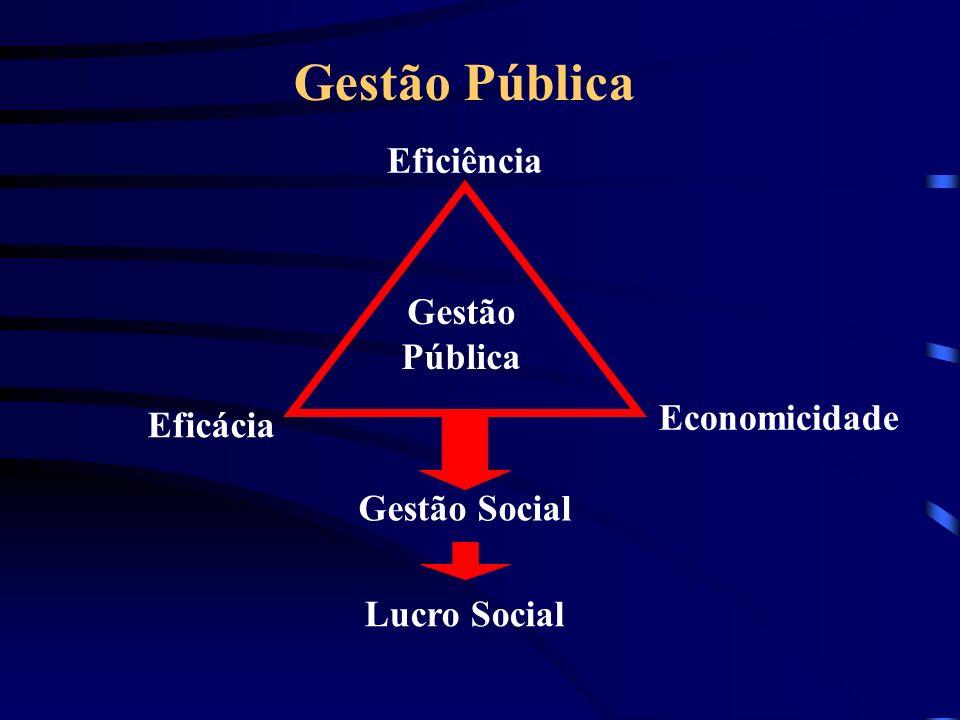 Gestão Pública Eficiência Gestão Pública Economicidade Eficácia