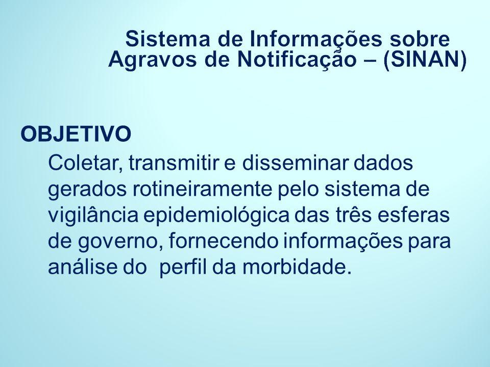 Sistema de Informações sobre Agravos de Notificação – (SINAN)