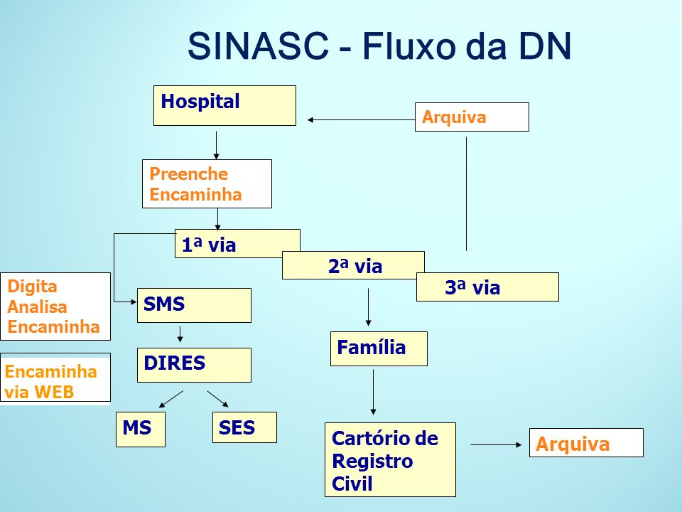 SINASC - Fluxo da DN Hospital 1ª via 2ª via 3ª via SMS Família DIRES