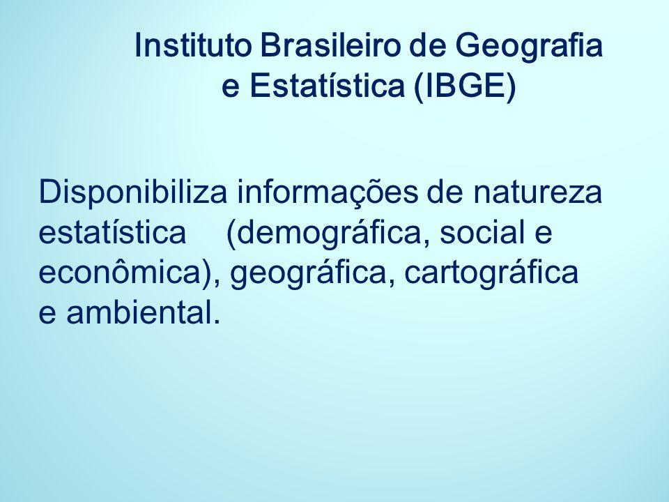 Instituto Brasileiro de Geografia e Estatística (IBGE)