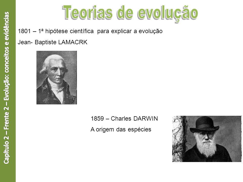 Capítulo 2 – Frente 2 – Evolução: conceitos e evidências
