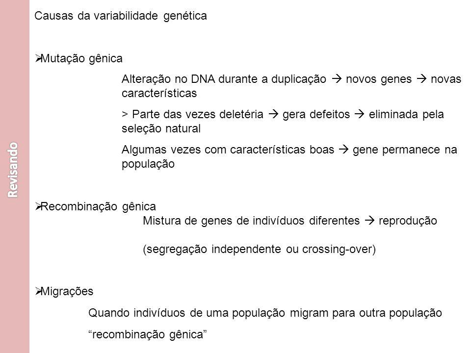 Revisando Causas da variabilidade genética Mutação gênica
