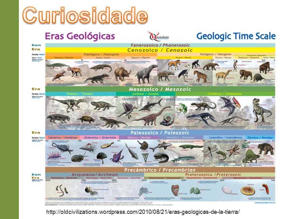 Curiosidade http://oldcivilizations.wordpress.com/2010/08/21/eras-geologicas-de-la-tierra/