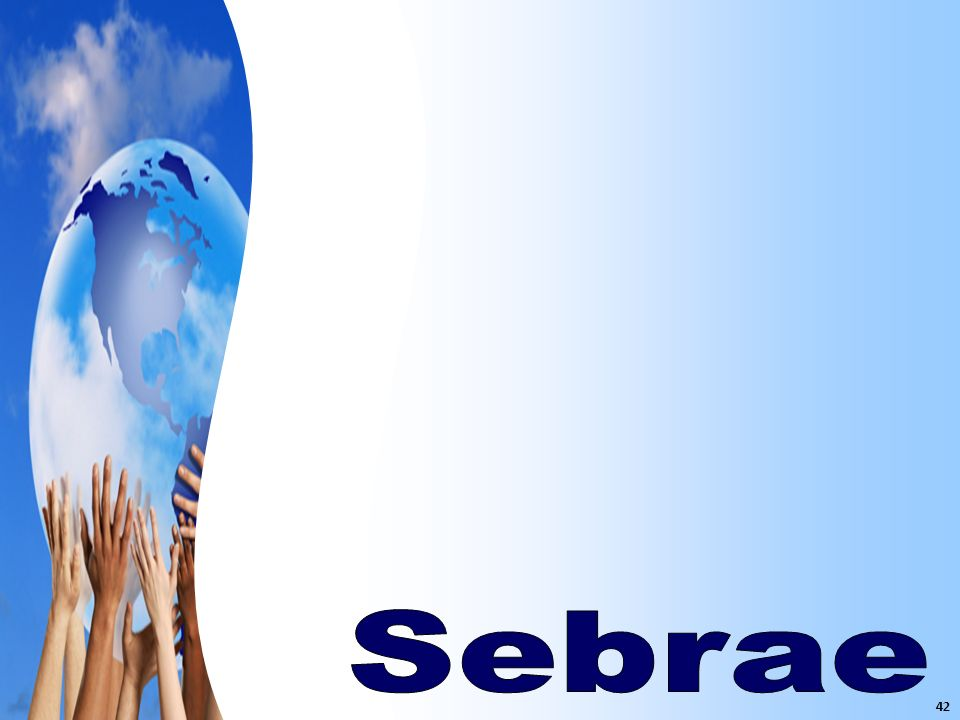 Sebrae 42