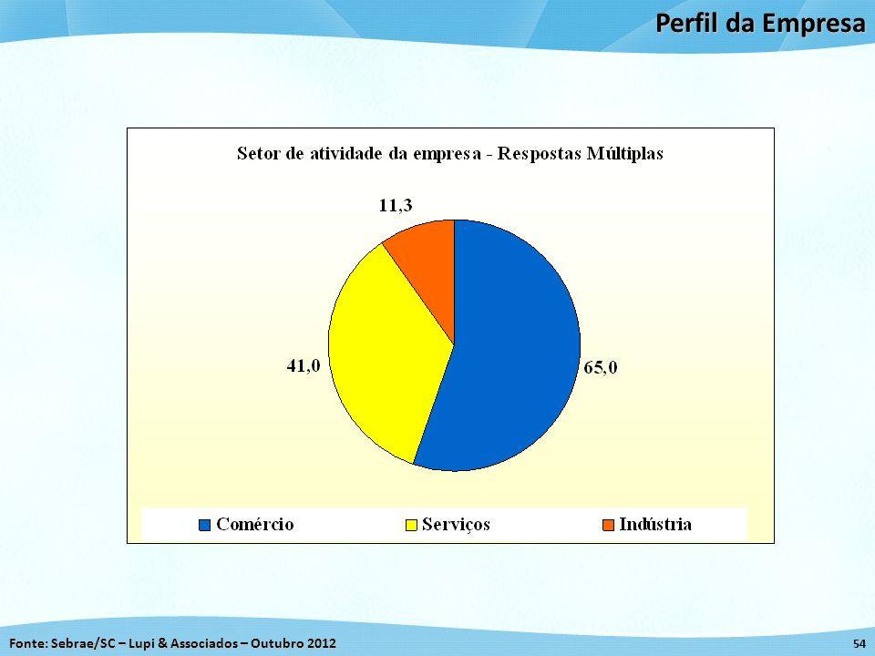 Perfil da Empresa 54