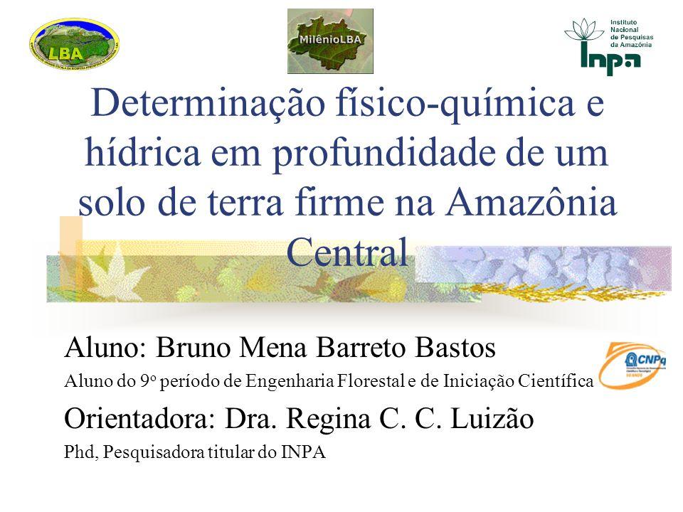 Determinação físico-química e hídrica em profundidade de um solo de terra firme na Amazônia Central