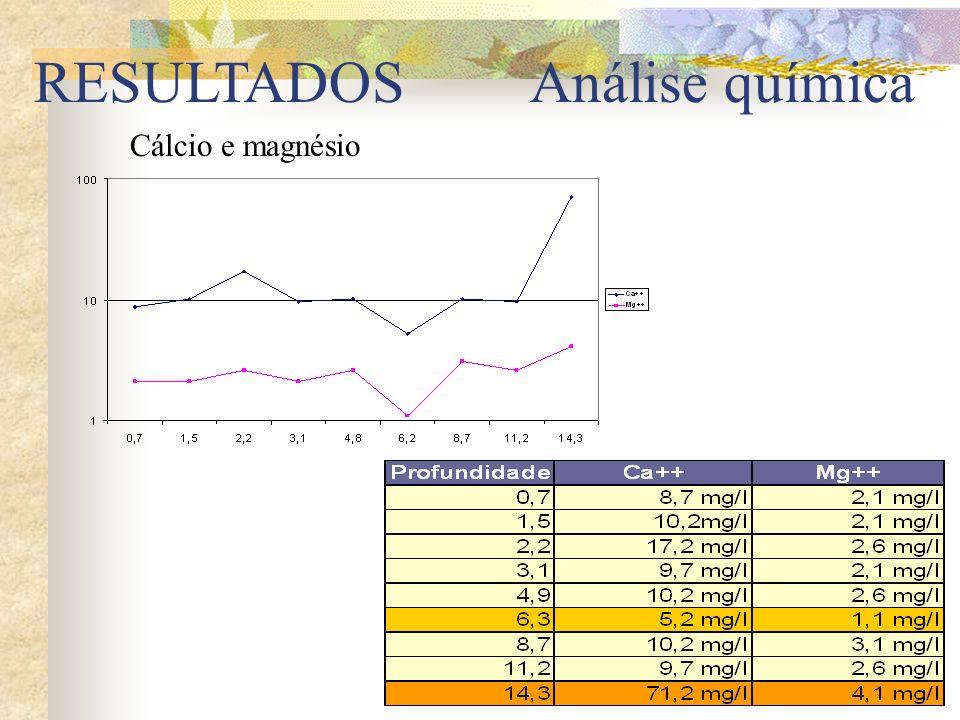 RESULTADOS Análise química Cálcio e magnésio