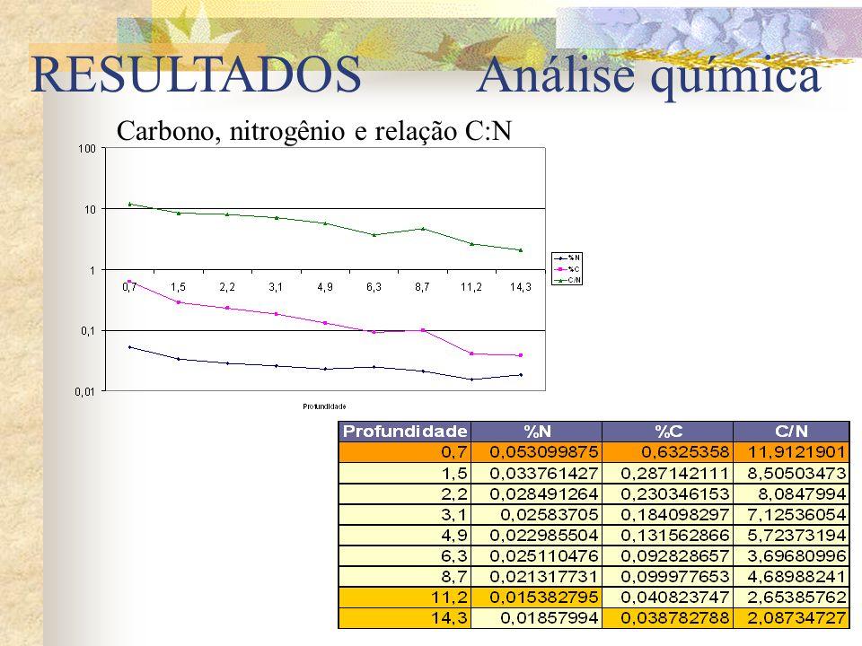 RESULTADOS Análise química Carbono, nitrogênio e relação C:N