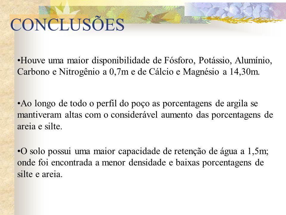 CONCLUSÕES Houve uma maior disponibilidade de Fósforo, Potássio, Alumínio, Carbono e Nitrogênio a 0,7m e de Cálcio e Magnésio a 14,30m.