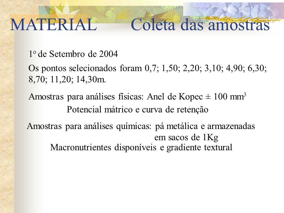 MATERIAL Coleta das amostras 1o de Setembro de 2004