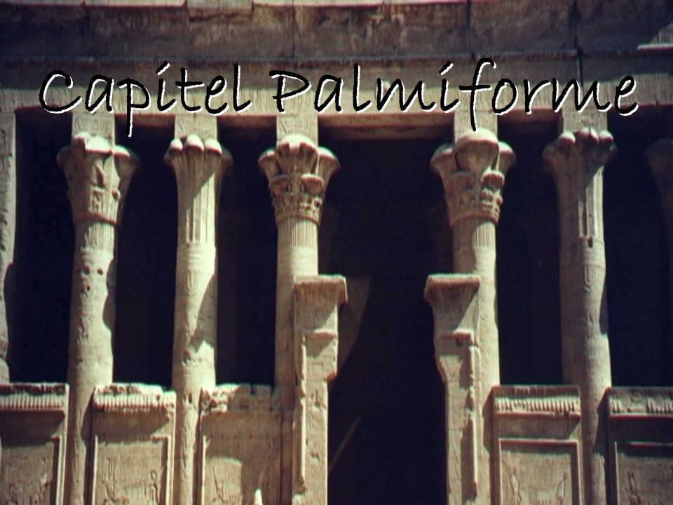 Capitel Palmiforme