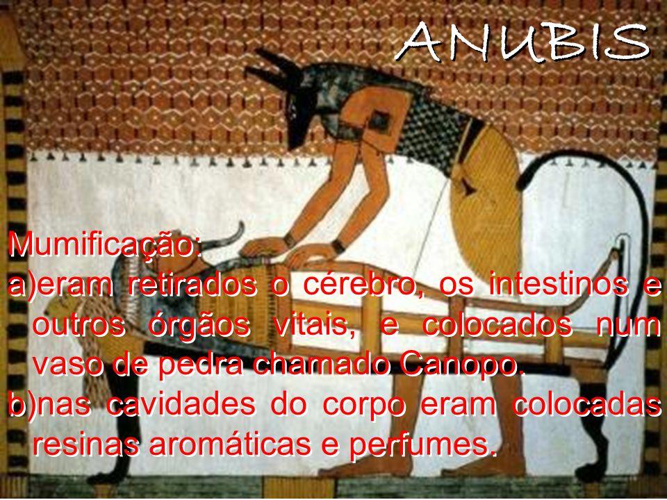 ANUBIS Mumificação: eram retirados o cérebro, os intestinos e outros órgãos vitais, e colocados num vaso de pedra chamado Canopo.
