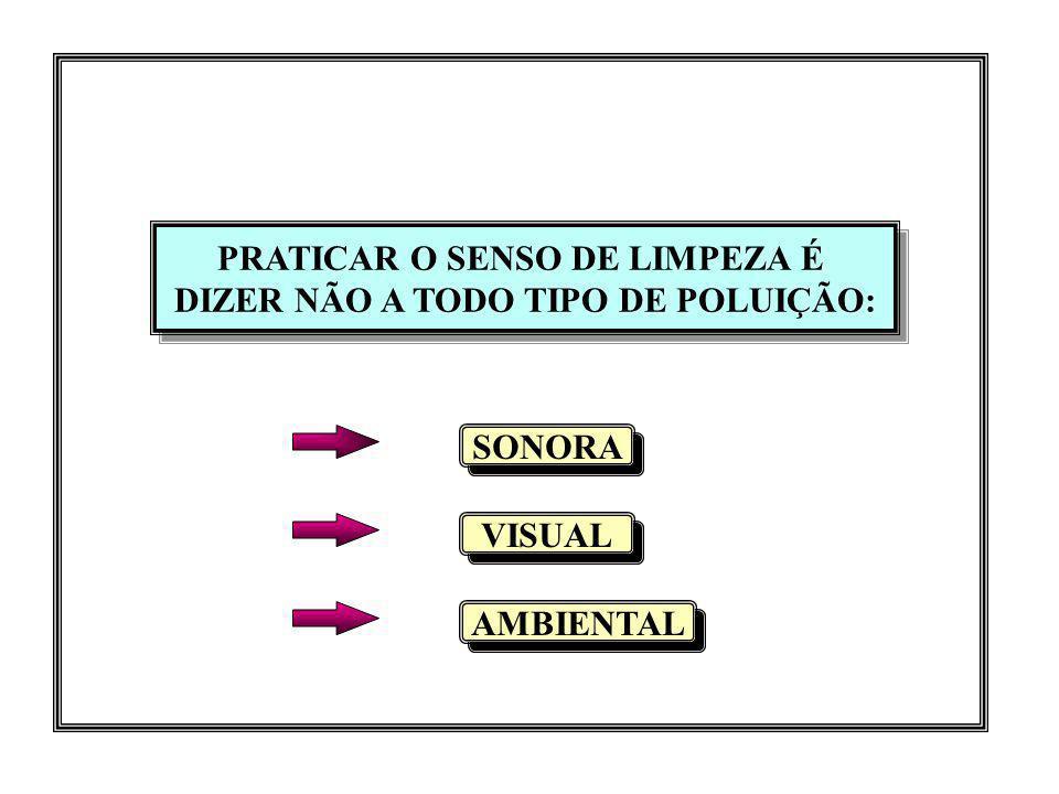 PRATICAR O SENSO DE LIMPEZA É DIZER NÃO A TODO TIPO DE POLUIÇÃO: