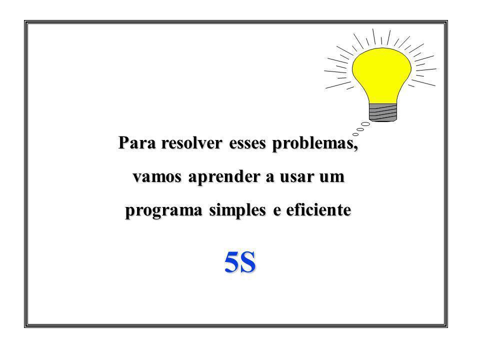 5S Para resolver esses problemas, vamos aprender a usar um