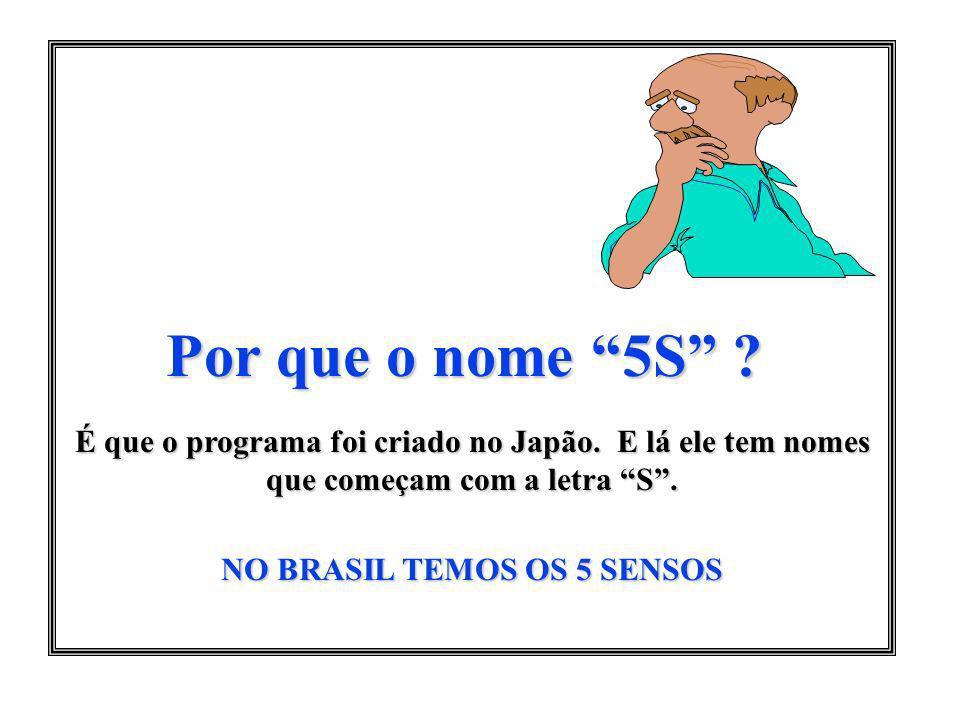 NO BRASIL TEMOS OS 5 SENSOS
