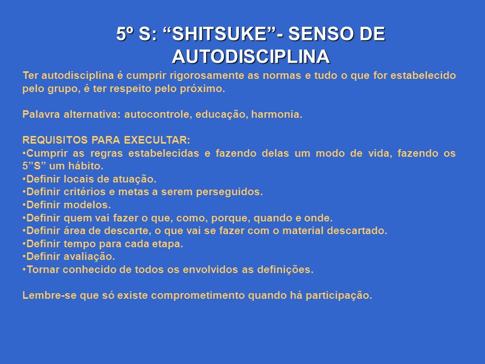 5º S: SHITSUKE - SENSO DE AUTODISCIPLINA