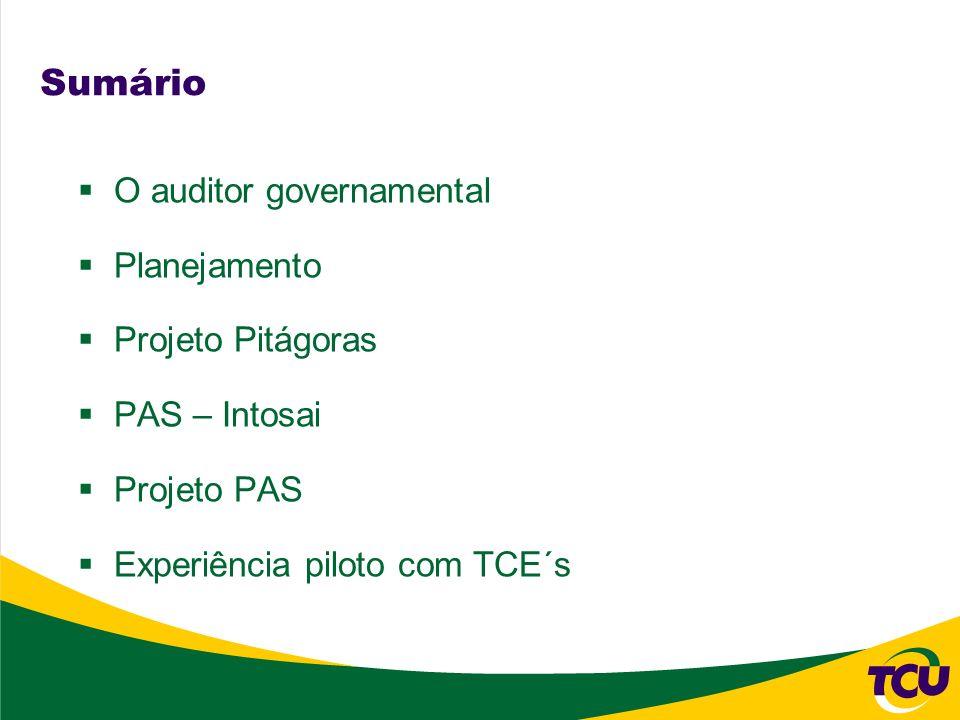 Sumário O auditor governamental Planejamento Projeto Pitágoras