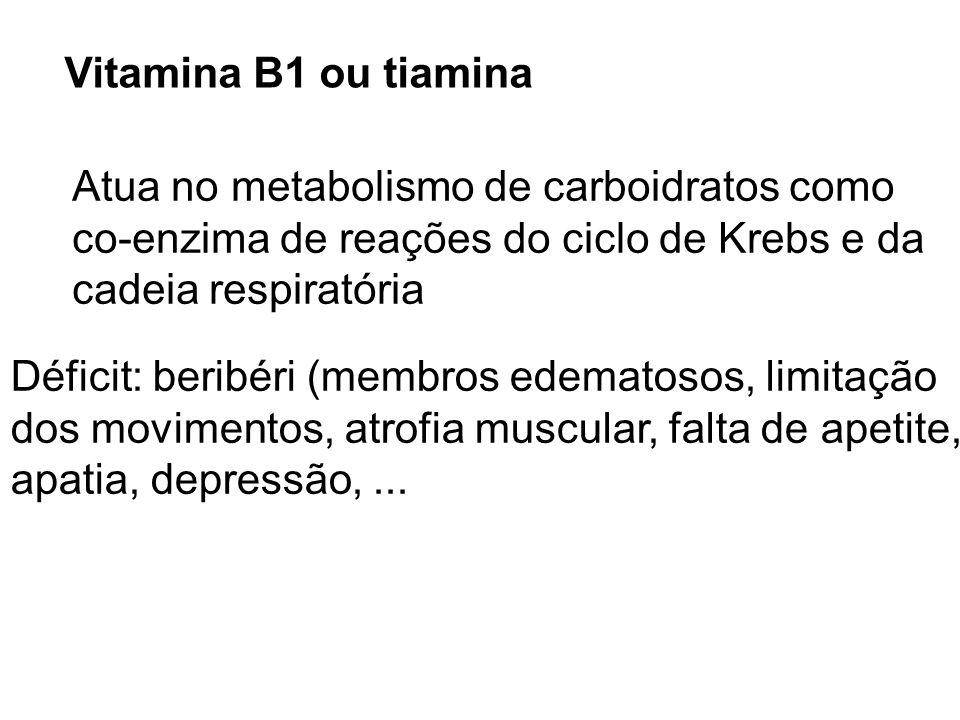 Vitamina B1 ou tiaminaAtua no metabolismo de carboidratos como. co-enzima de reações do ciclo de Krebs e da.