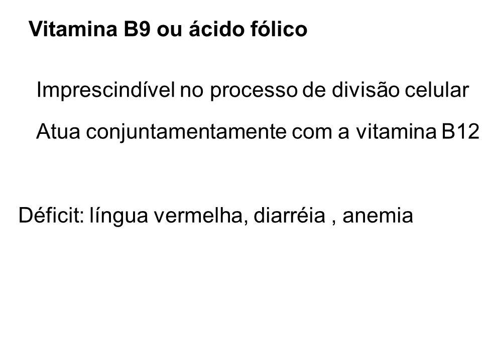 Vitamina B9 ou ácido fólico