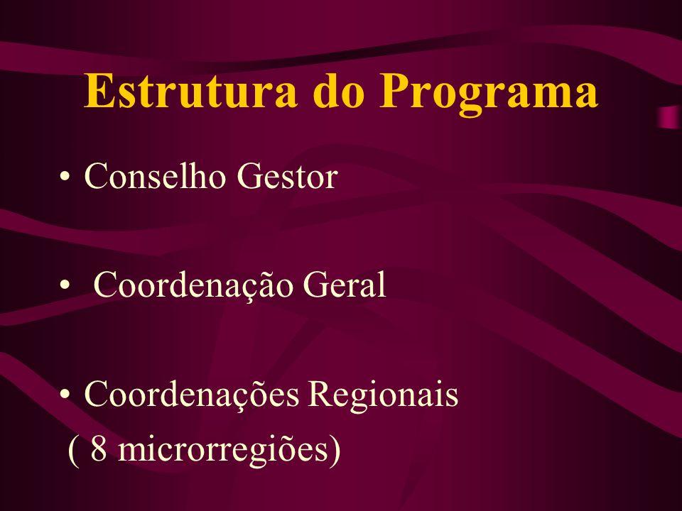 Estrutura do Programa Conselho Gestor Coordenação Geral