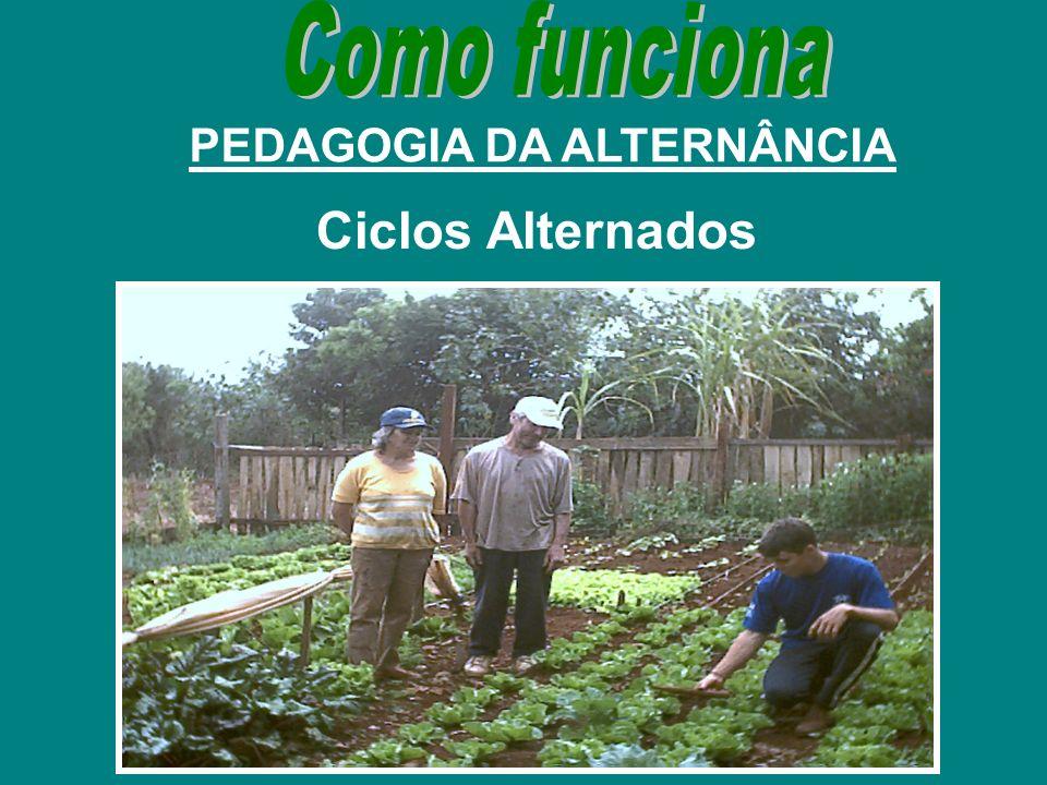 PEDAGOGIA DA ALTERNÂNCIA