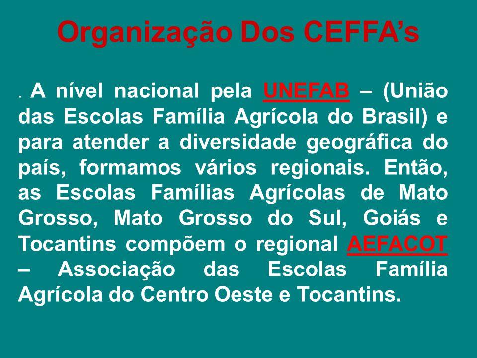 Organização Dos CEFFA's