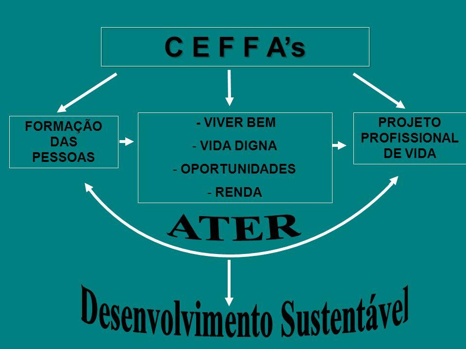 PROJETO PROFISSIONAL DE VIDA Desenvolvimento Sustentável