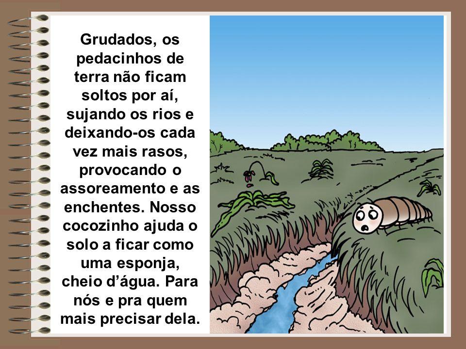 Grudados, os pedacinhos de terra não ficam soltos por aí, sujando os rios e deixando-os cada vez mais rasos, provocando o assoreamento e as enchentes.