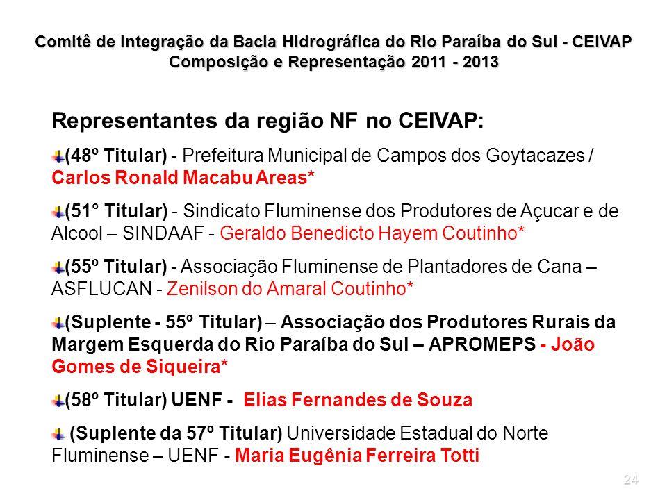 Composição e Representação 2011 - 2013