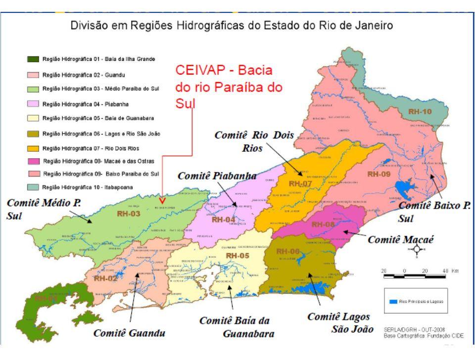 Comitês e Consórcios Instalados no Bacia do Paraíba do Sul