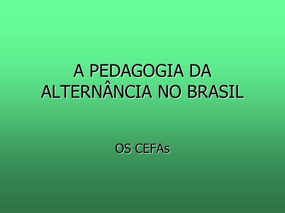 A PEDAGOGIA DA ALTERNÂNCIA NO BRASIL