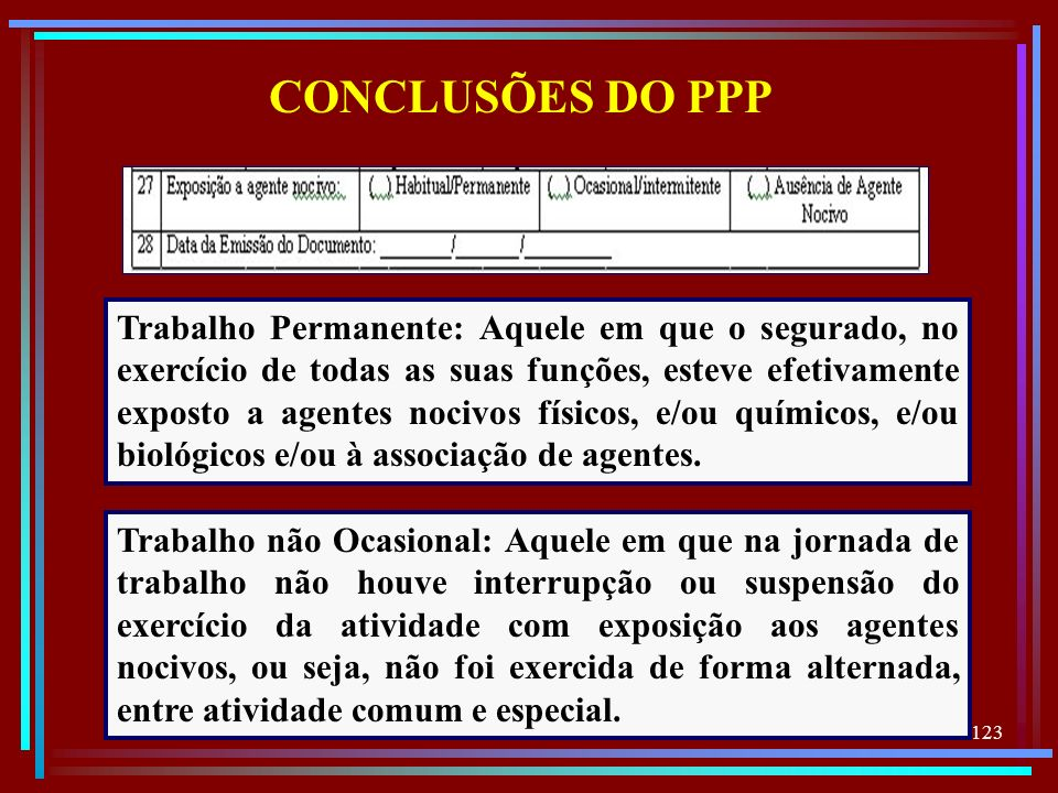 CONCLUSÕES DO PPP