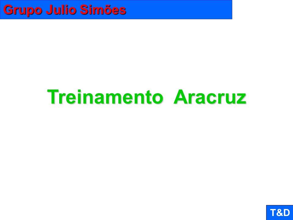 Grupo Julio Simões Treinamento Aracruz T&D