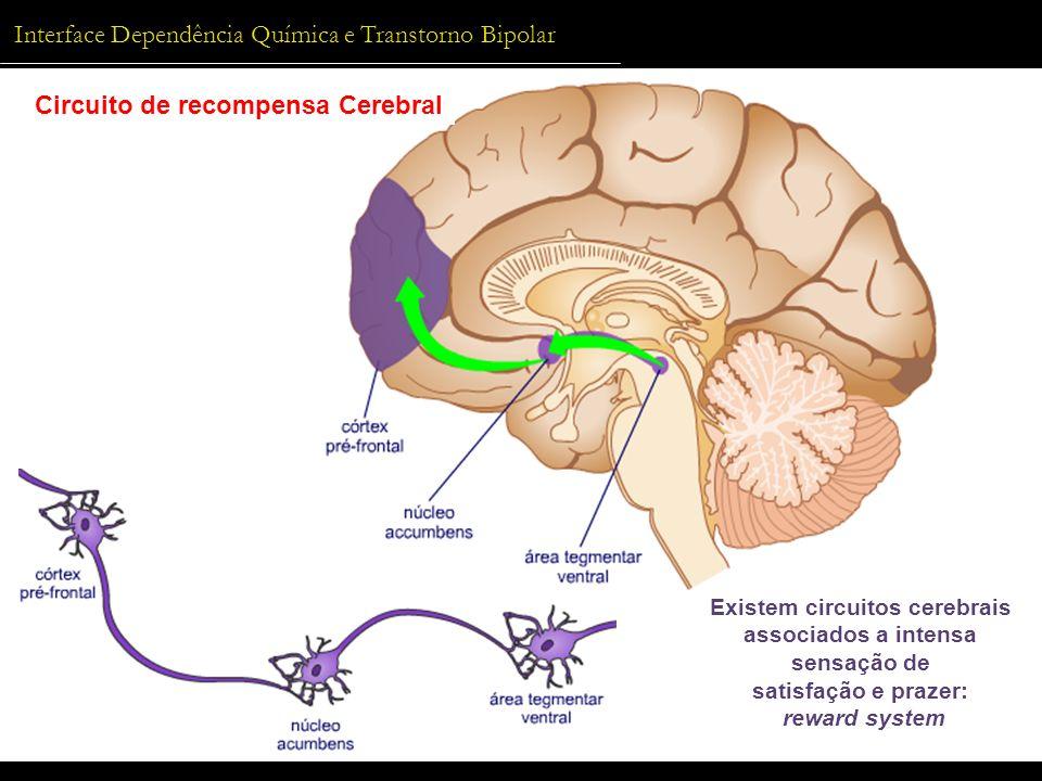 Existem circuitos cerebrais associados a intensa sensação de