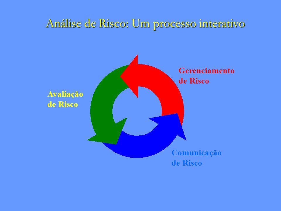 Análise de Risco: Um processo interativo