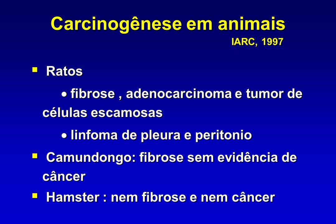 Carcinogênese em animais IARC, 1997